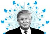 Trump wi Tweet Birds CROPPED